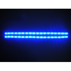 STRISCIA LED BLU 12V 6W/M IP20