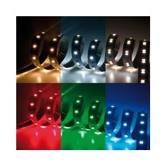 STRISCIA LED TRICOLOR+RGB 24V 24W/M IP20 RGB+C.F.N
